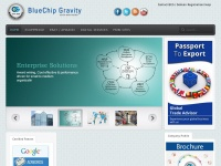 bluechipgravity.co.uk
