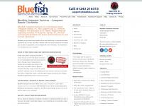 bluefishcs.co.uk