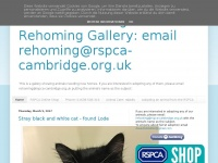rspca-cambridge-rehome.blogspot.com