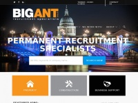 Bigantgroup.co.uk