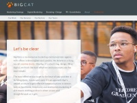 Bigcatagency.com