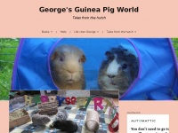 georgesgpworld.uk