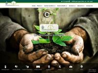 clockhousenursery.co.uk