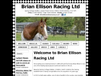 brianellisonracing.co.uk
