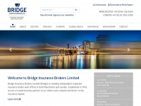 bridgeinsurance.co.uk