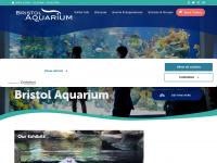 bristolaquarium.co.uk