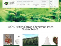 britishchristmastree.co.uk