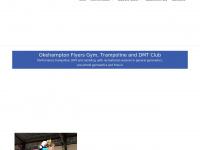okehamptonflyers.org.uk