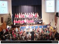 Synchordia.co.uk